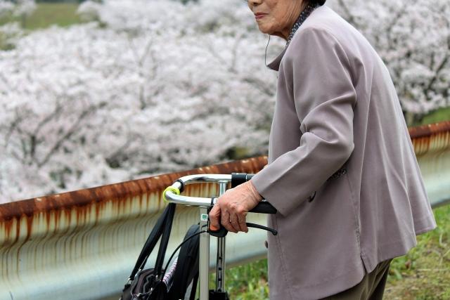 photo_160831_kaigoi